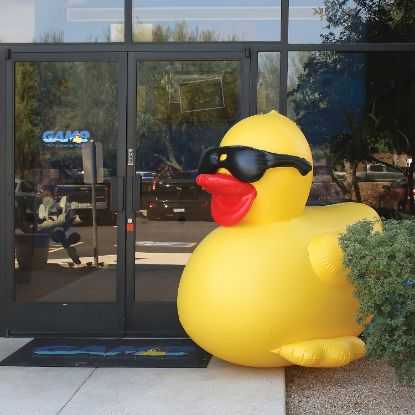 156-M: Inflatable 5ft Derby Duck, Promotional Use