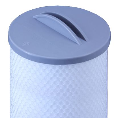 "RD800-2120SS: Filter Cartridge, Rising Dragon, Diameter: 4-3/4"", Length: 13-3/4"", Top: Handle, Bottom: 1-13/16""Open, 25 sq ft"