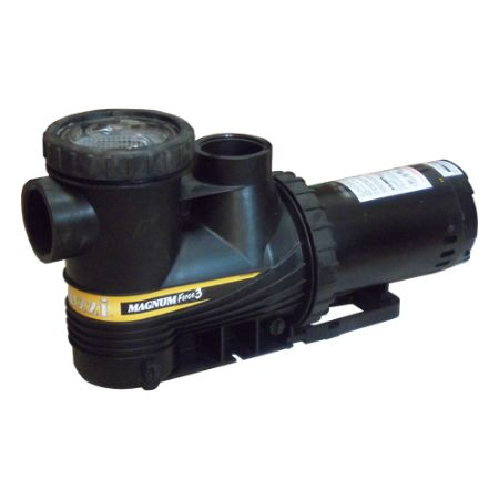 Picture for category In Ground Pool Pumps