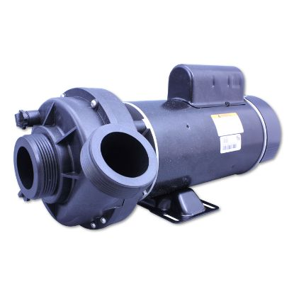 "6500-257: Pump, Sundance Theraflo, 2.0HP, 230V, 8.7/3.0A, 2-Speed, 2""MBT, SD, 48-Frame"
