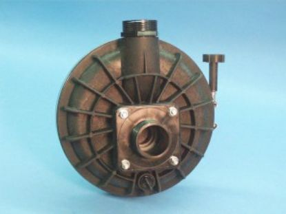 "321103: Wetend, Advantge Pool Master, 56 Frame Square Flange, 1.0HP, 1-1/2""MBT In/Out, Center Discharge w/ Trap & Lid"